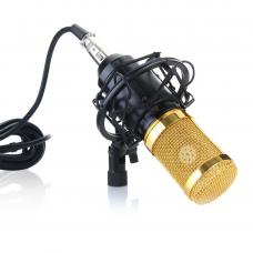 Микрофон студийный M-800 (PRO-MIC)